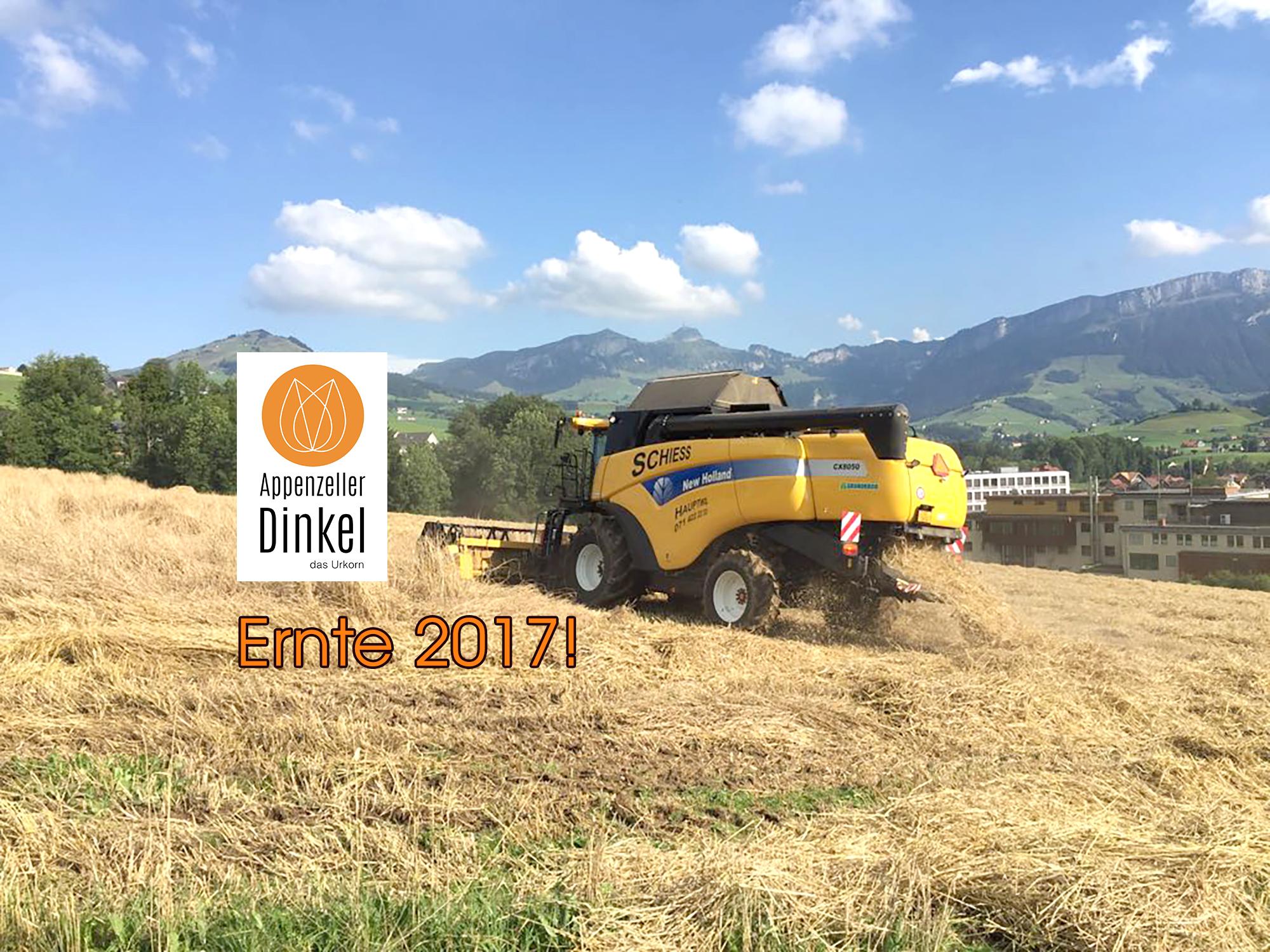 DinkeErnte2017-259943cef72d40